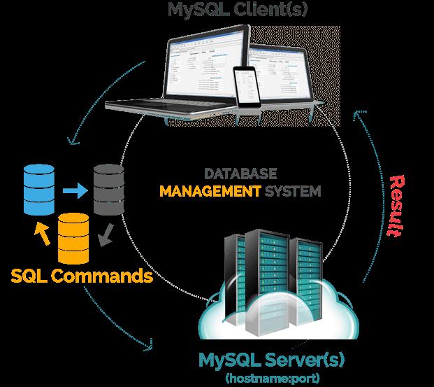 Understanding More Database Management System